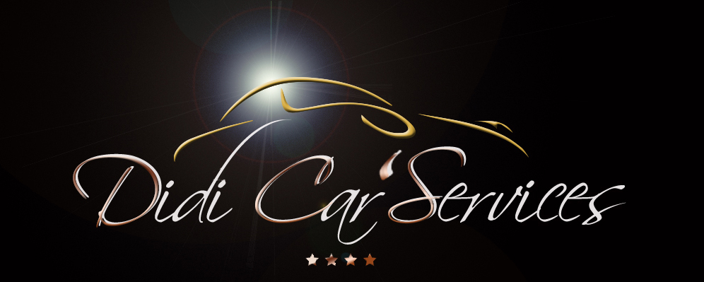 Logo Didi Car's Services